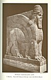 WINGED MAN-HEADED LION<br> <i>In Marble. From N.W. Palace of Nimroud; now in the British Museum</i>.<br> Photo. Mansell