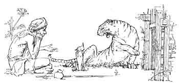 Indian Fairy Tales The Tiger The Brahman And The Jackal