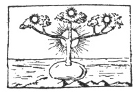 FIG. 30. HINDU SYMBOL. (GUIGNAUT, vol. iv., 2nd part, pl. ii., fig. 16.)
